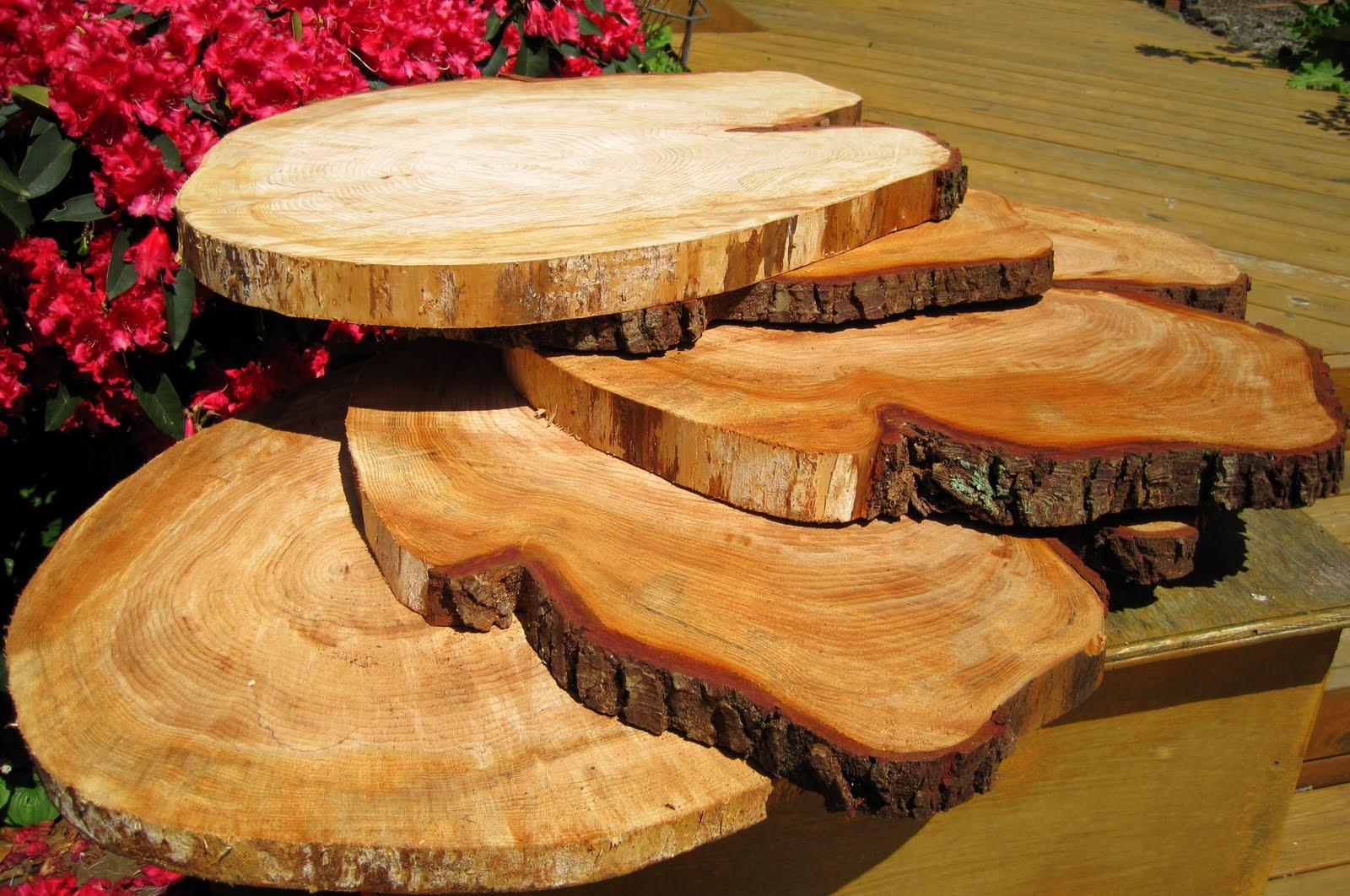 Tree Stump Cupcake Stand Lipper International 1024 Acacia